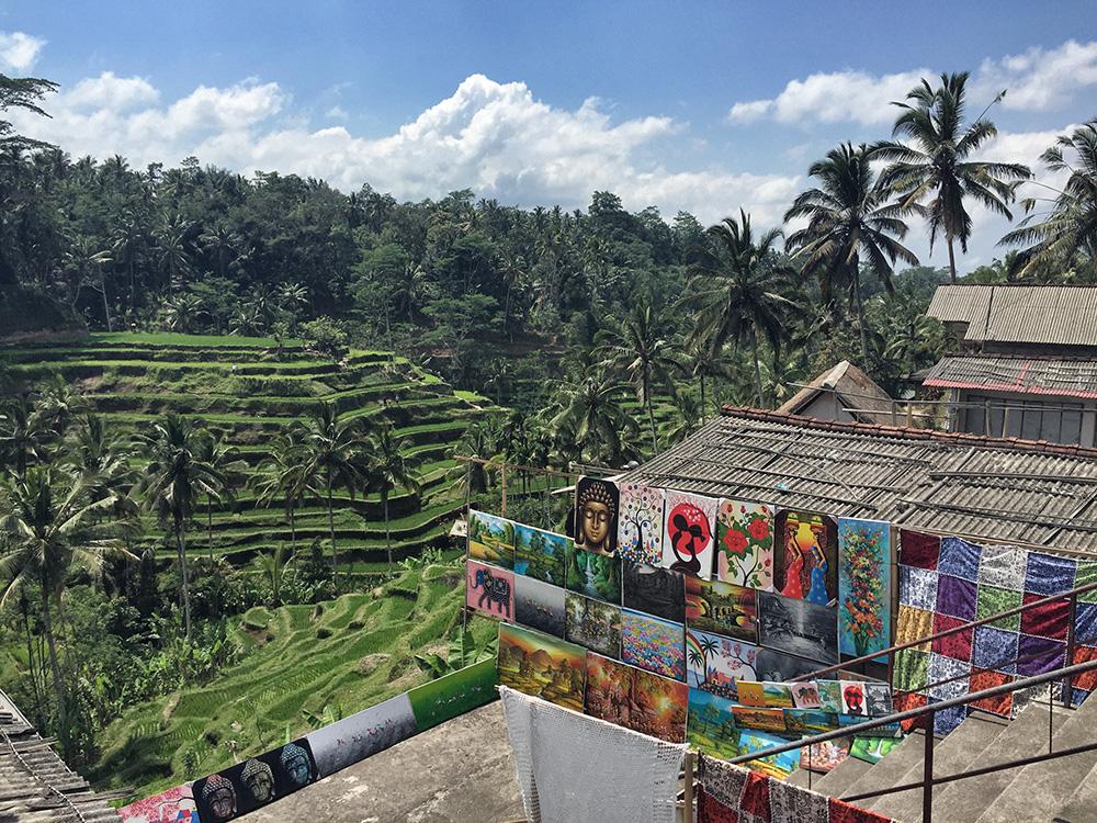 Bali_10-Tegallalang  RiceTerraces (1)