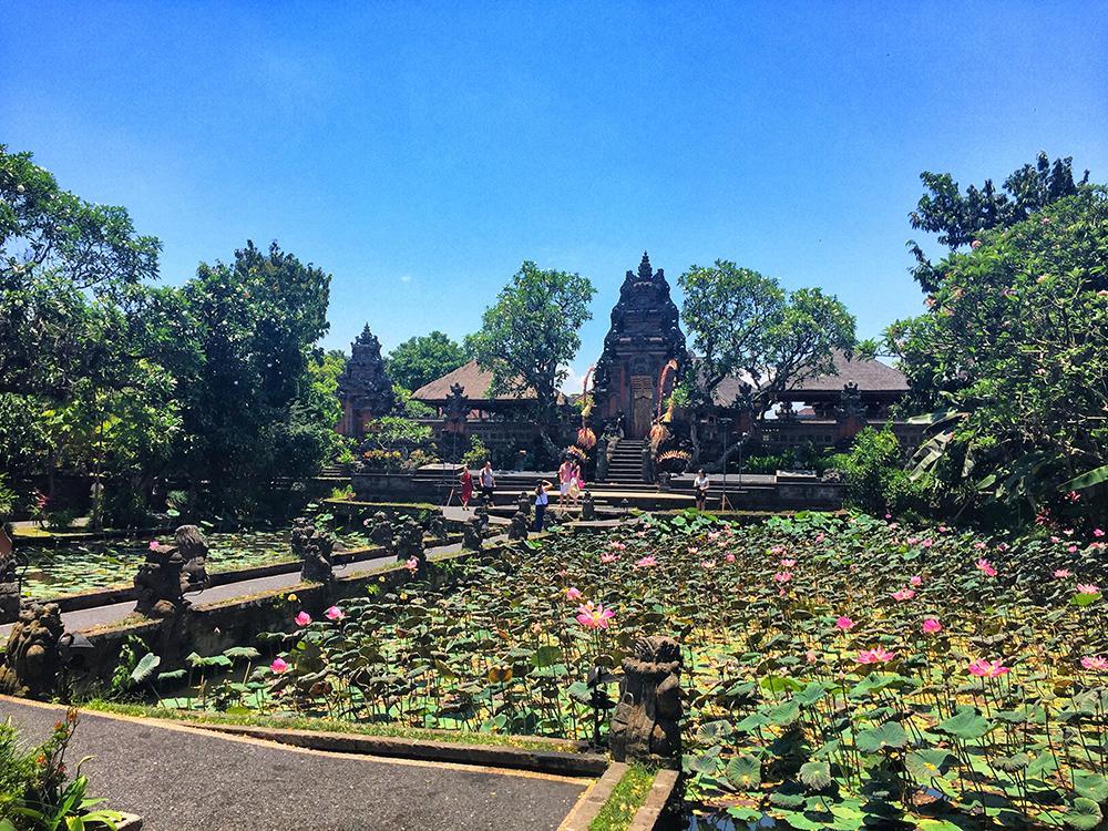Bali_2-Ubud town (2)