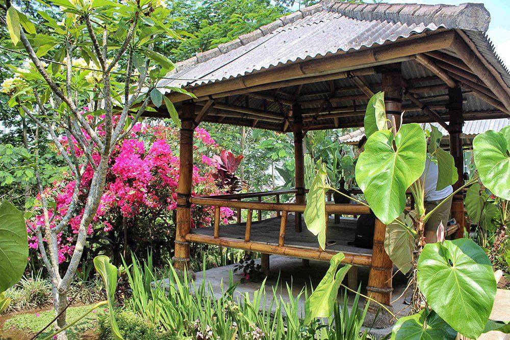 Bali_4a-Baturiti (1)