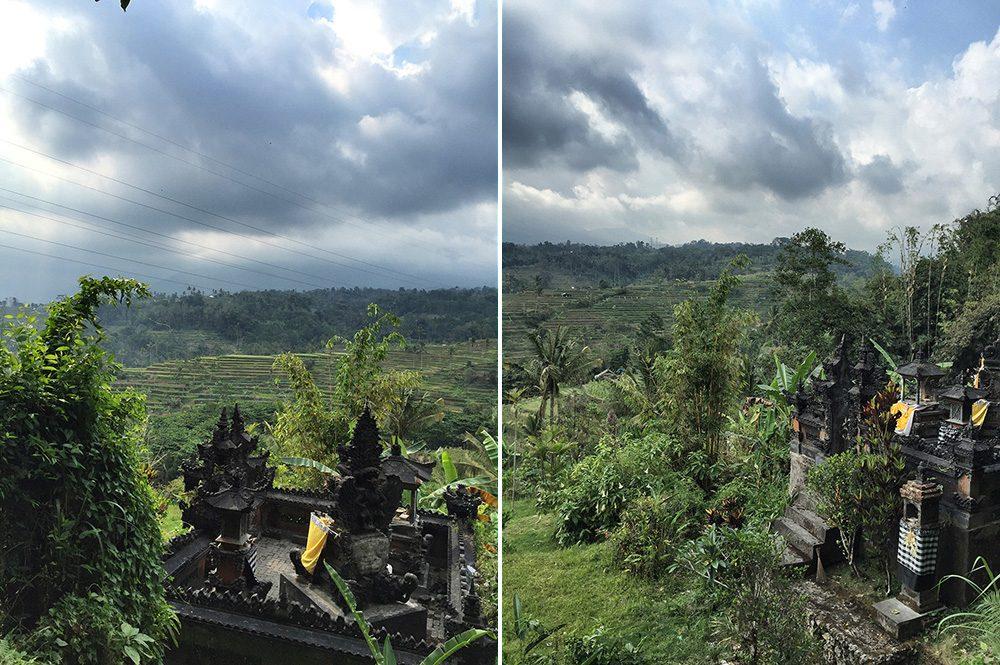 Bali_4b-Jatiluwih  (1)