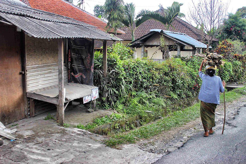 Bali_4b-Jatiluwih  (21)