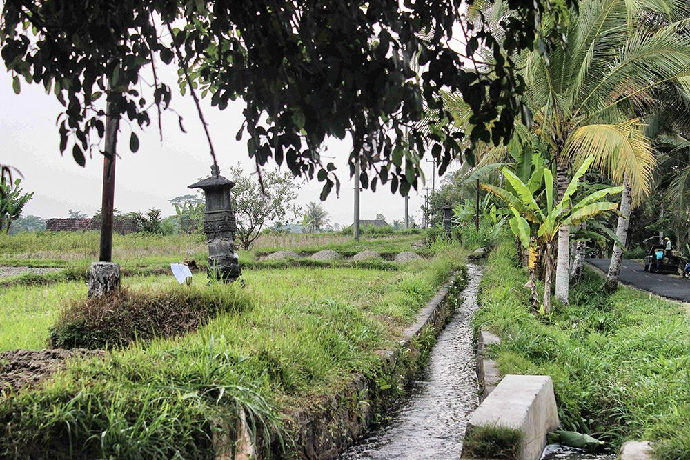 Bali_4b-Jatiluwih  (3)