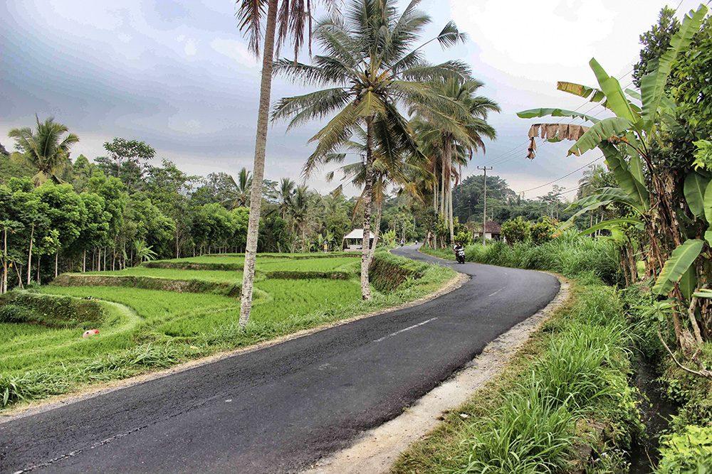 Bali_4b-Jatiluwih  (4)