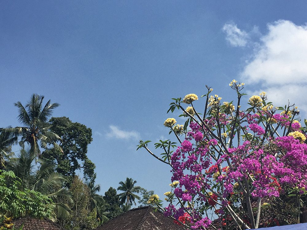Bali_6-Sideman (1)