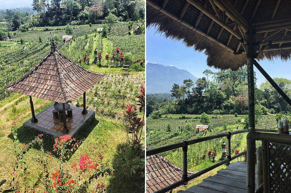 Bali_6-Sideman (15)