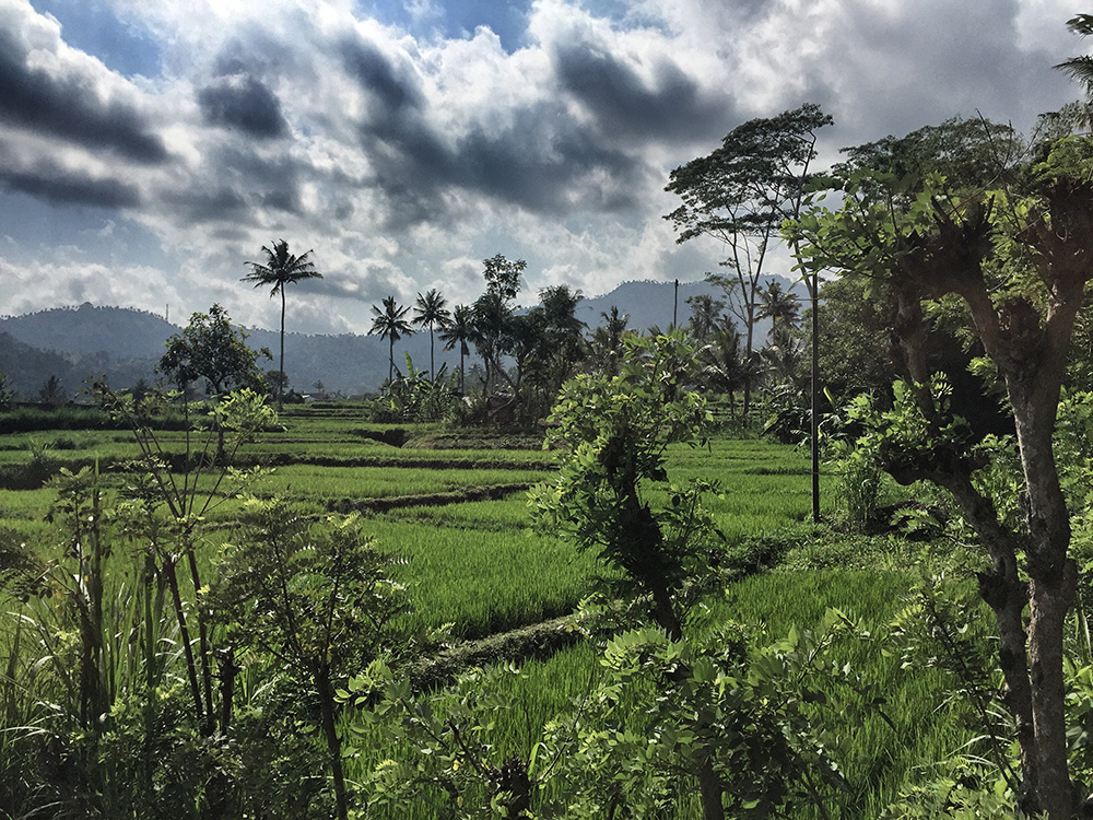 Bali_6-Sideman (24)