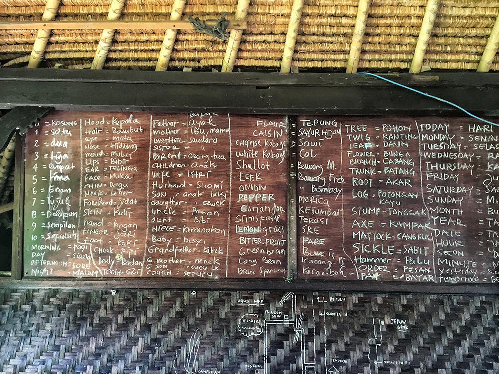 Bali_8-UbudRiceTerraces (14)