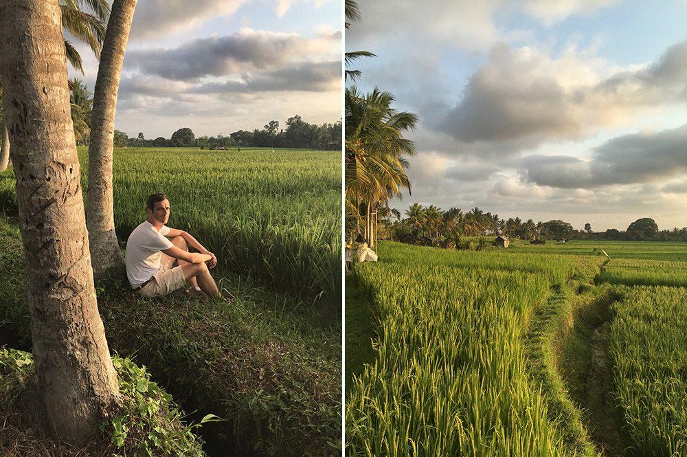 Bali_8-UbudRiceTerraces (22)