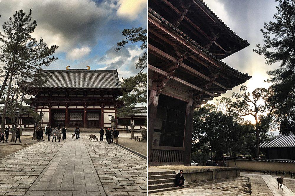 D_Nara (1)