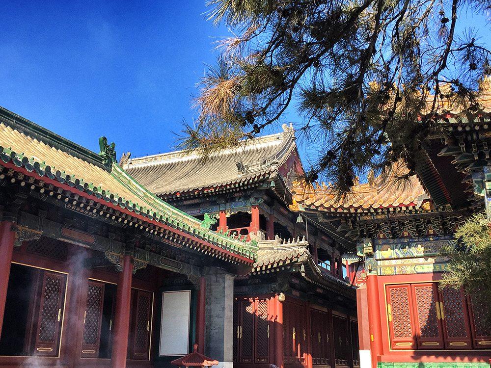 Lama Temple (11)