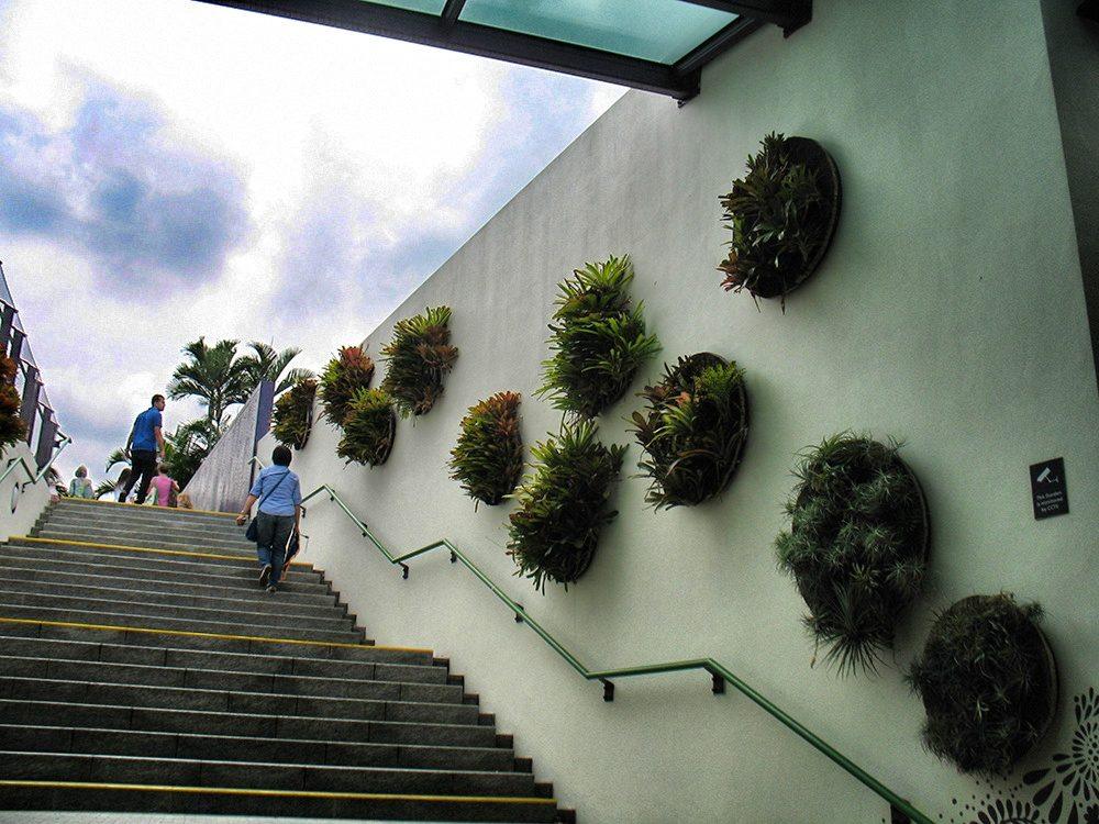 Q botanic (8)