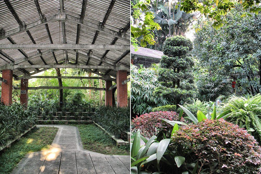 1_Garden (12)