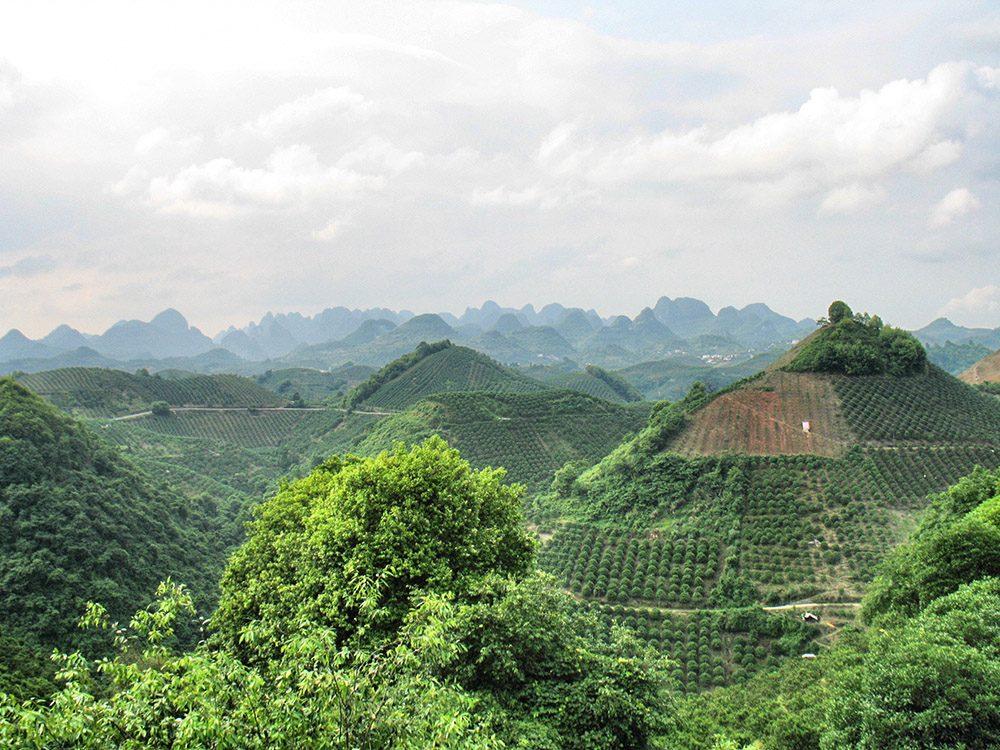 Yangshuo (62)