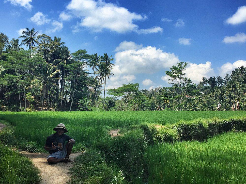 Bali_10-Tegallalang  RiceTerraces (6)