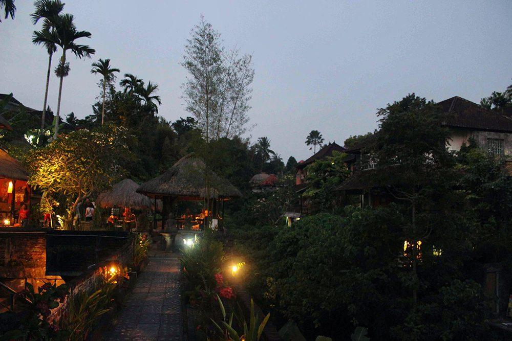 Bali_2-Ubud town (11)