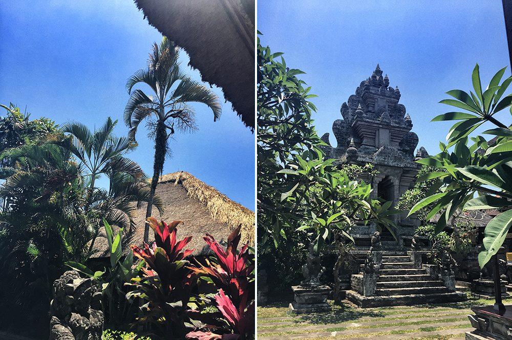 Bali_2-Ubud town (3)