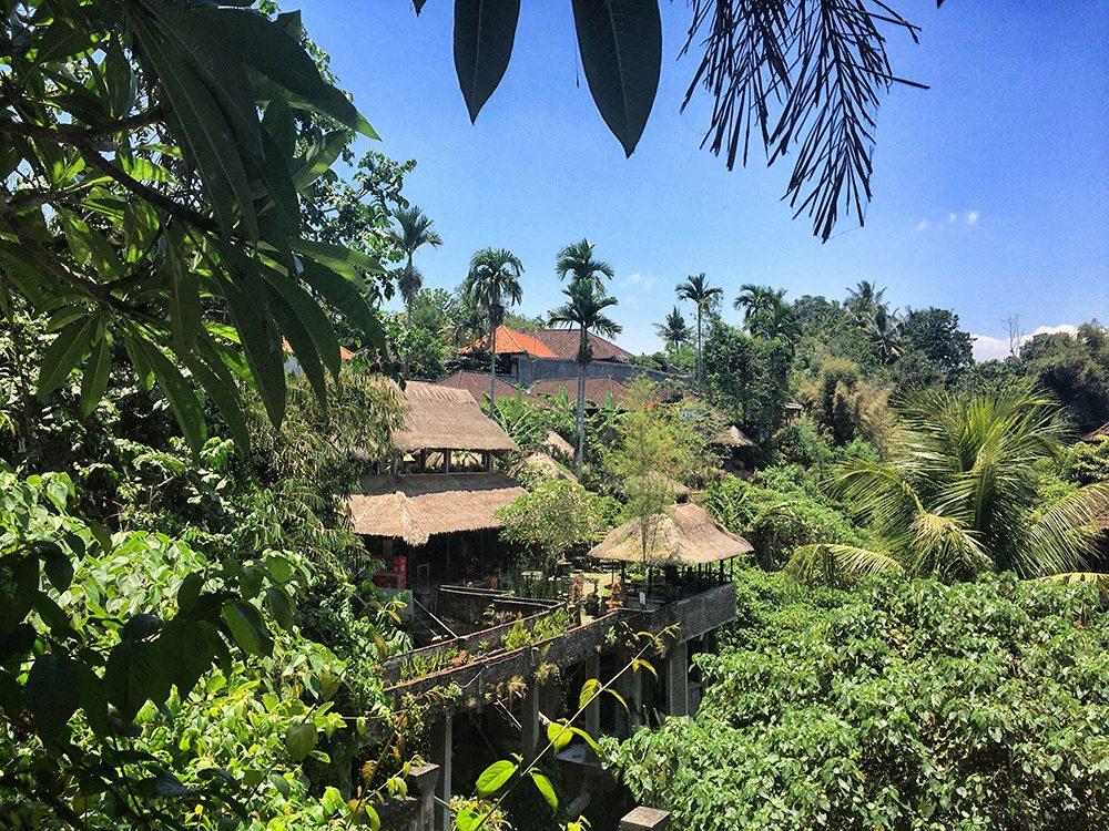 Bali_2-Ubud town (9)
