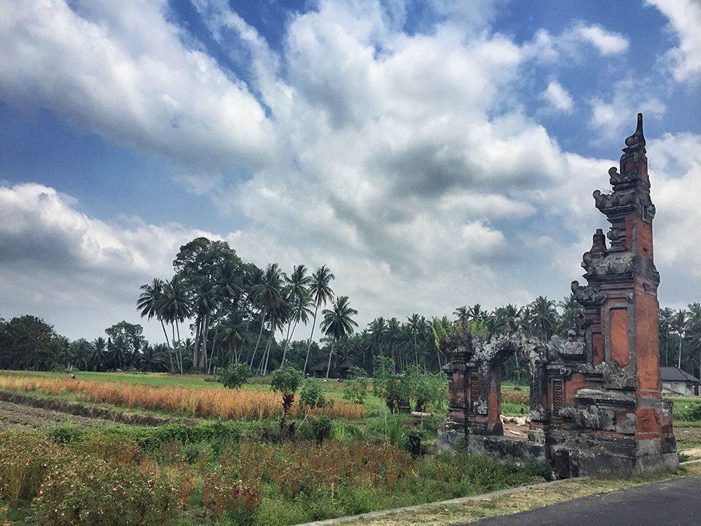 Bali_3-UlunDanu (5)