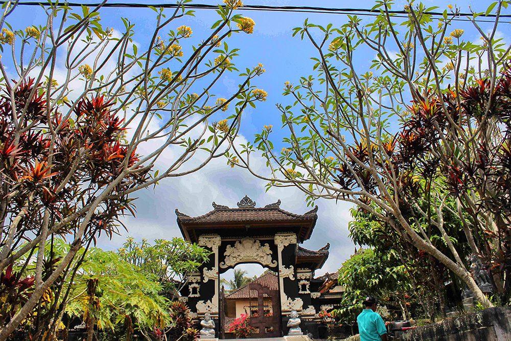 Bali_3-UlunDanu (7)