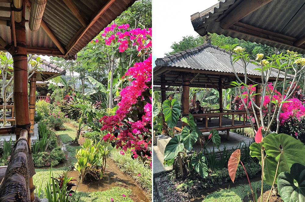 Bali_4a-Baturiti (2)