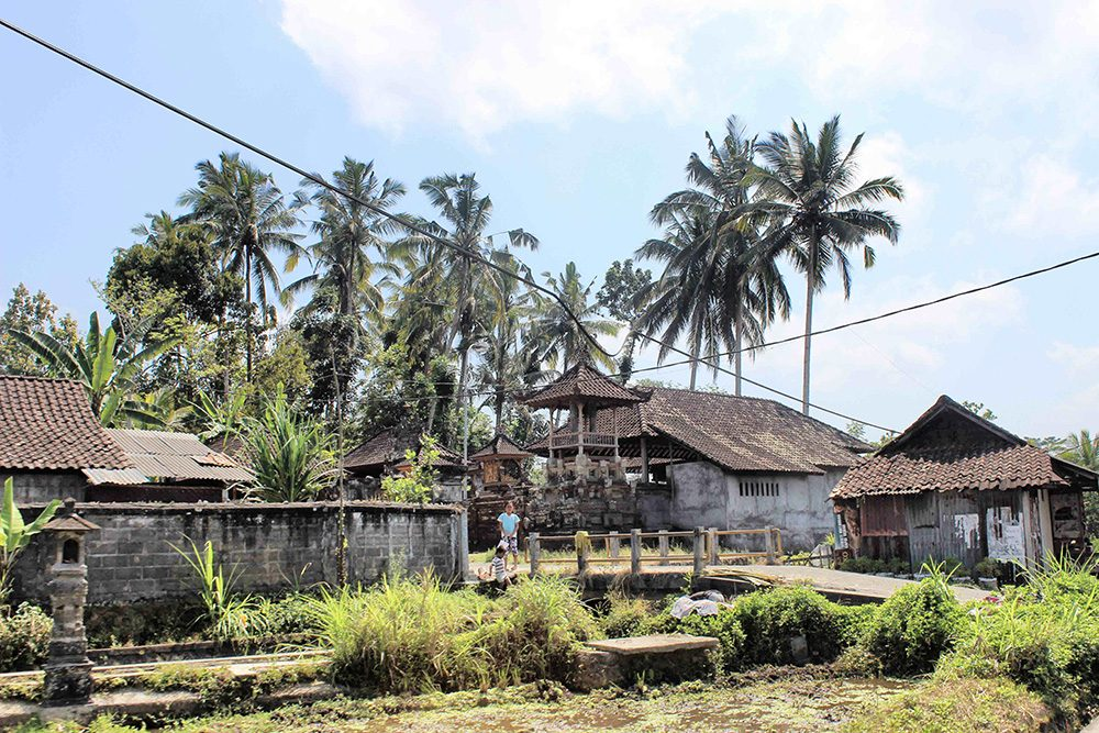 Bali_6-Sideman (10)