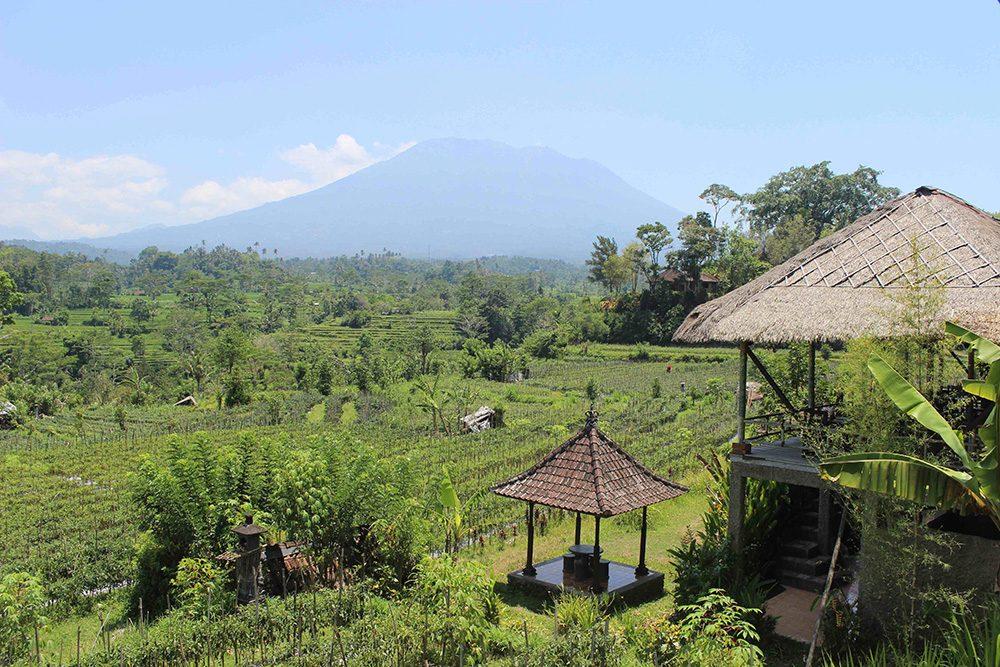 Bali_6-Sideman (14)
