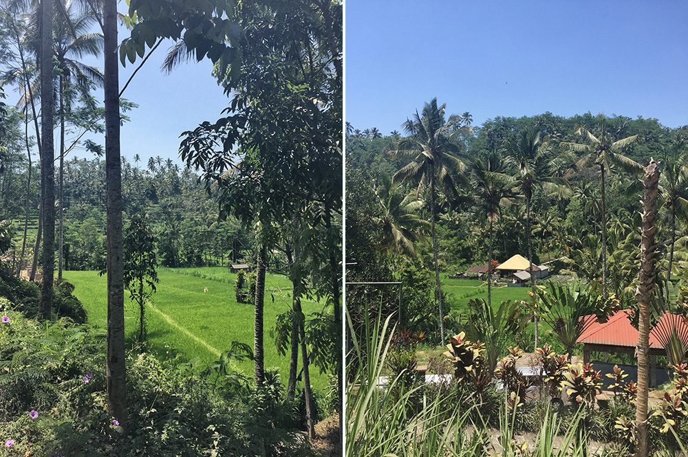 Bali_6-Sideman (2)