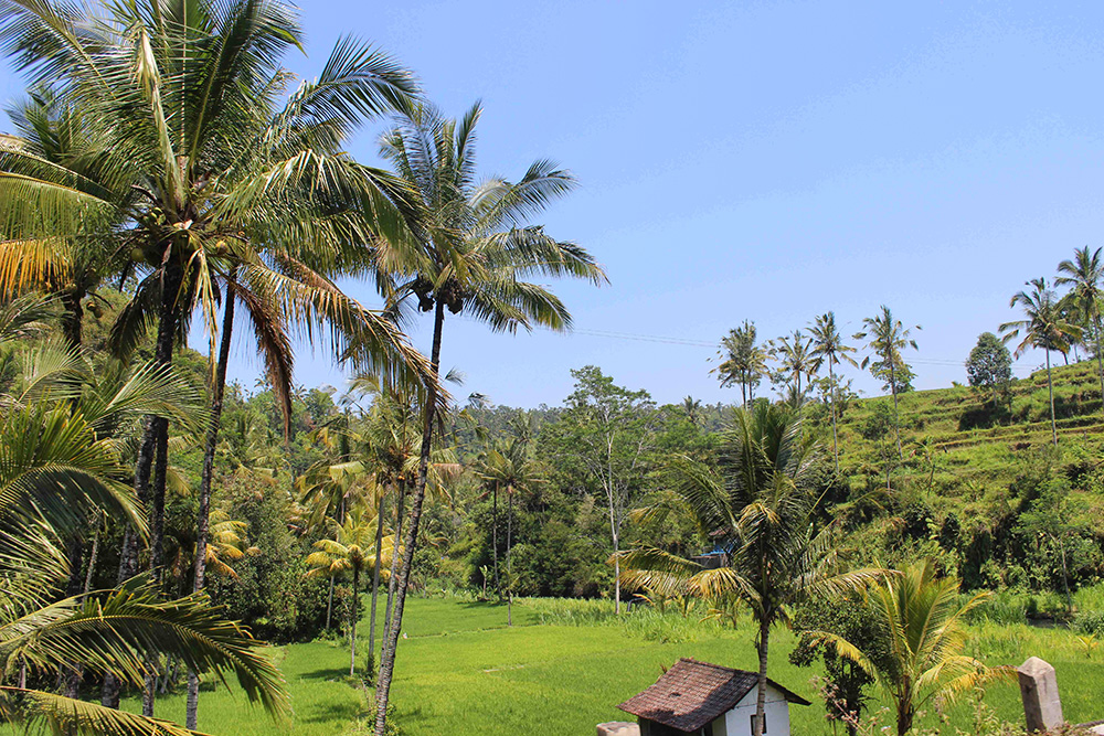 Bali_6-Sideman (3)