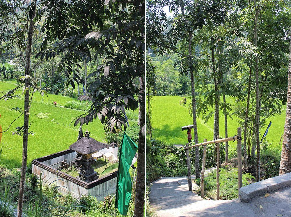 Bali_6-Sideman (4)