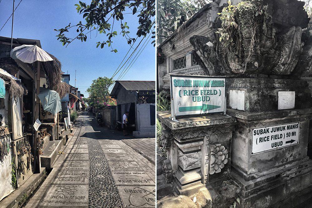 Bali_8-UbudRiceTerraces (1)