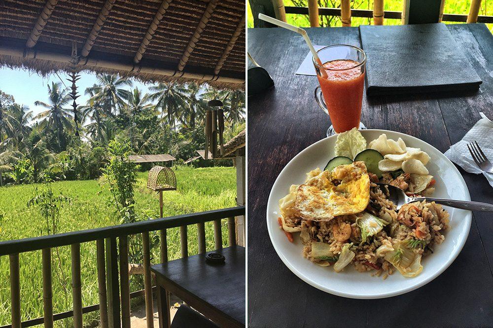 Bali_8-UbudRiceTerraces (15)