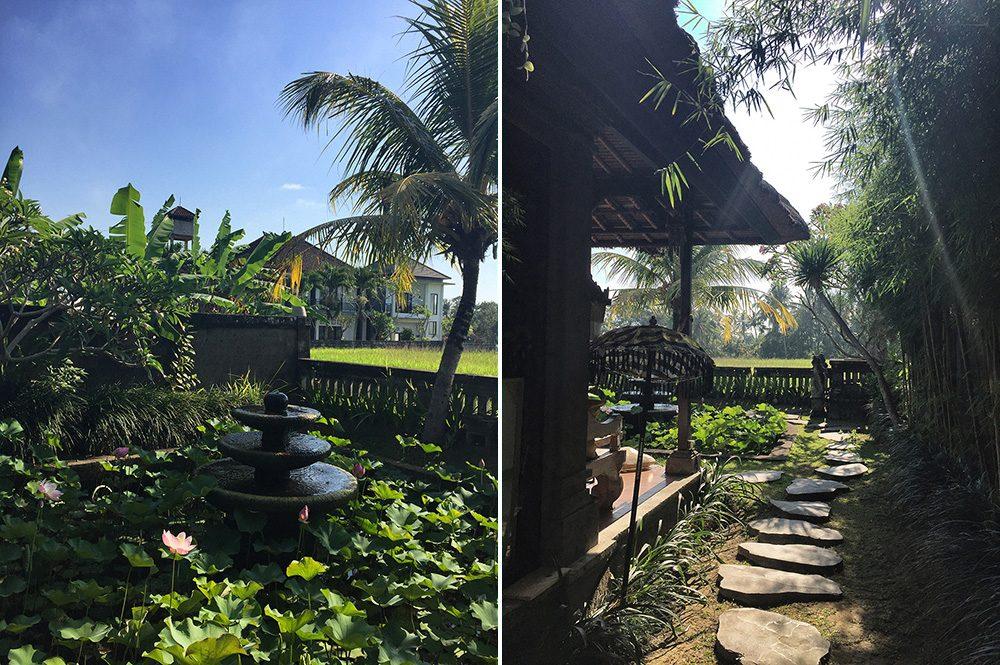 Bali_8-UbudRiceTerraces (30)