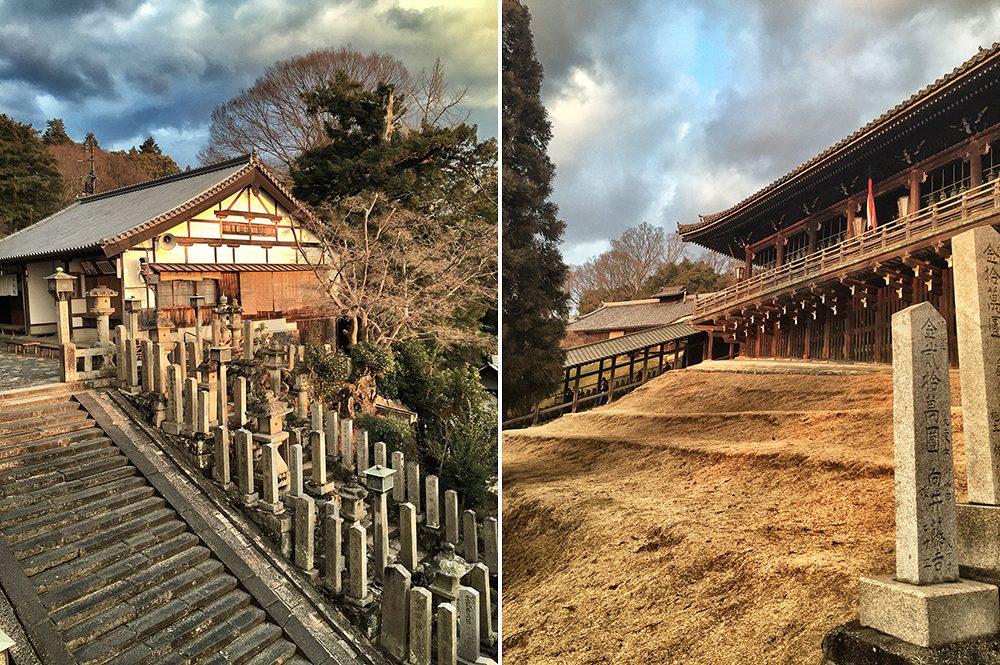 D_Nara (11)