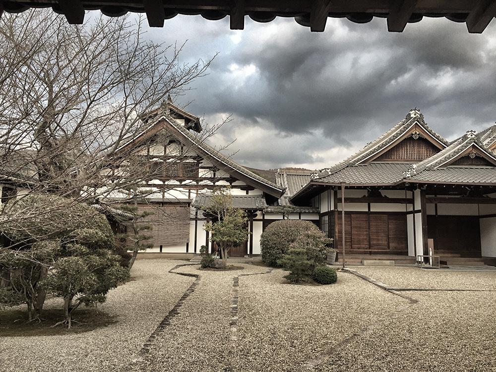 D_Nara (2)