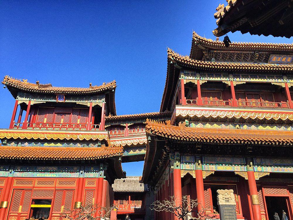 Lama Temple (13)