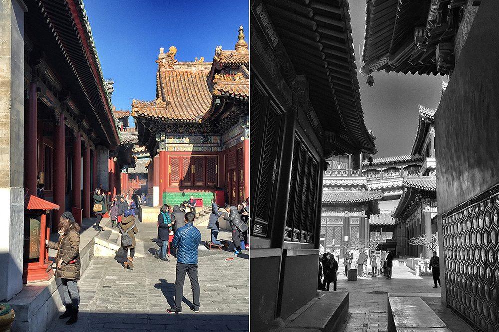 Lama Temple (9)
