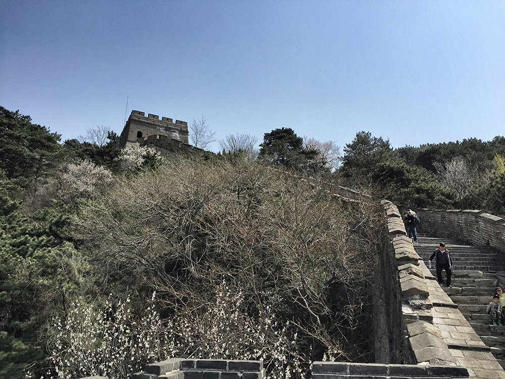 Great Wall (6)